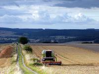 F�r die Landwirte im Rheinland l�uft die Ernte alles andere als rund. Immer wieder zwingt das Wetter sie zu Unterbrechungen.