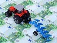 Sachsen: Der F�rdersatz f�r Investitionsvorhaben liegt im Normalfall bei 25 Prozent.