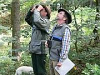 F�rster der Bayerischen Forstverwaltung bei der Kronenzustandserhebung