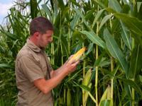 Eink�nfte_Landwirtschaft_Fachverband