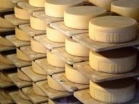 Offenbar denkt die Kommission dar�ber nach, die Lagerkosten f�r K�se, Magermilchpulver und Butter ganz oder teilweise zu �bernehmen.