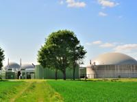 Strategie_Fachverband Biogas