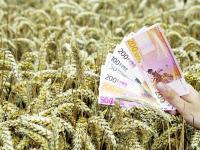 Ab 2015: Basispr�mie von 175 Euro r�ckt n�her