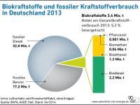 Biokraftstoffe_AEE