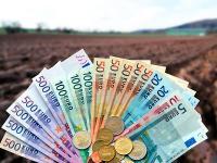 In Mecklenburg-Vorpommern sollen 13 % der landwirtschaftlichen Betriebe F�rderung f�r Investitionen erhalten.