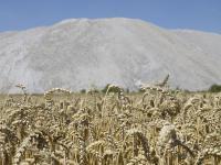 Durch die Wiederaufnahme des Kalibergbaus sind die Anwohner durch die Begleiterscheinungen beunruhigt.