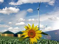 """Vom 7. bis 8. Juli findet das C.A.R.M.E.N.-Symposium """"Erneuerbare Energien - Die �kologische und �konomische Wende"""" in W�rzburg statt."""