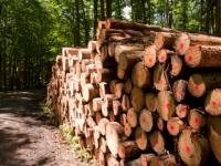 Holzheizung_AEE