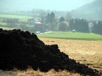 In Deutschland fallen j�hrlich 2 Millionen Tonnen Kl�rschlammtrockenmasse an. Darin sind etwa 60.000 Tonnen Phosphor enthalten.