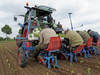 """Die von Agrarminister Schmidt beschriebenen """"Erleichterungen"""" f�r Landwirtschaft und Gartenbau bei der Einf�hrung des Mindestlohnes ernten nun Kritik."""