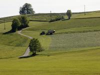 Gr�nland ist nur durch eine wirtschaftliche Nutzung zu erhalten, sagt der DBV.