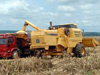 Landwirte in Brasilien und Argentinien fahren durch El Nino bessere Ernten ein.