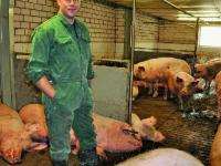 Im Sauenstall (wie auch im Flatdeck) hat sich Hendrik Maathuis f�r den Einbau eines W�rmetauschers entschieden, um Energiekosten zu sparen.