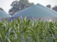 Der KTBL-Wirtschaftlichkeitsrechner Biogas bietet eine Hilfe f�r die Investitionsentscheidung bei Biogasanlagen.