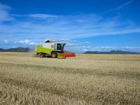 Dieses Jahr haben weniger Landwirte in M�hdrescher investiert.