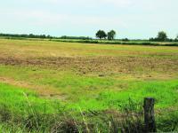 Eine Unterschutzstellung von Moorfl�chen k�nnte bedeuten, dass ihre normale Bewirtschaftung, wie hier z.B. durch Erneuerung der Grasnarbe, in Zukunft nicht mehr zul�ssig ist.